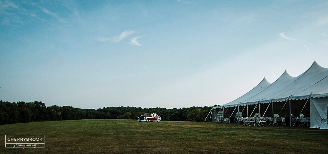 Quincy, Il Outdoor wedding photographs