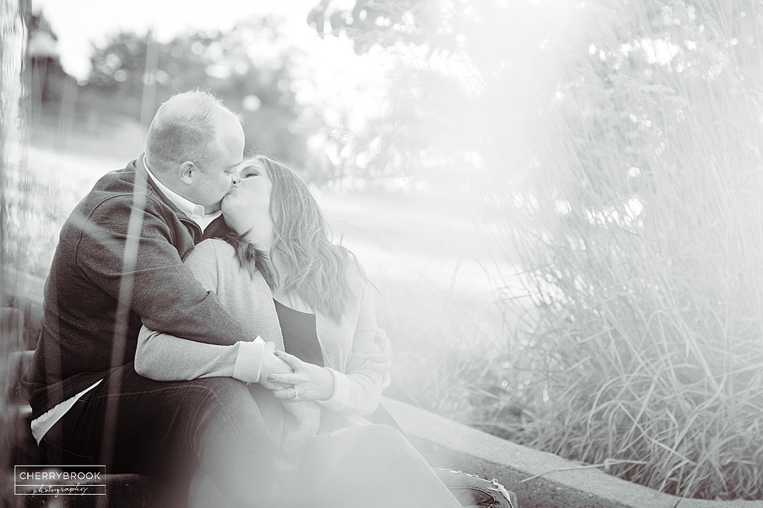 Engagement Photographs captured in Forest Park. St. Louis, MO