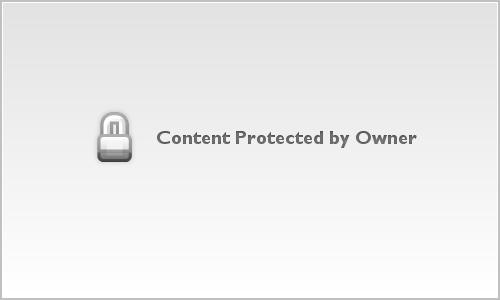 Springfield Illinois Wedding at Erins Pavilion